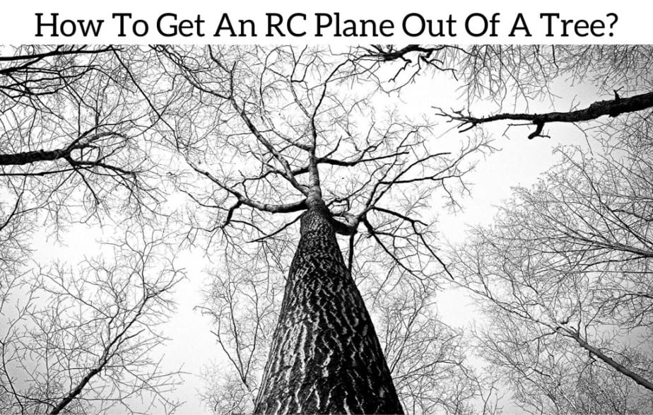 How To Get An RC Plane Out Of A Tree?