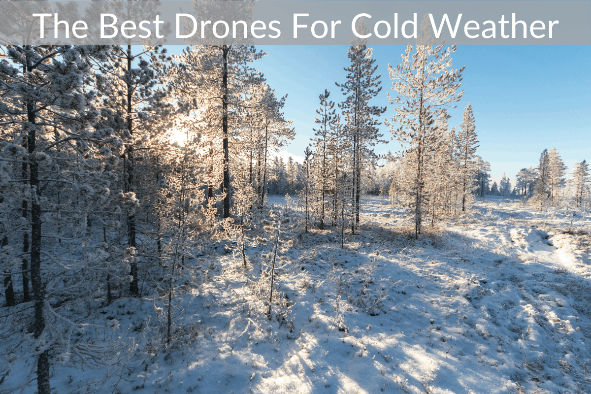 The Best Drones For Cold Weather